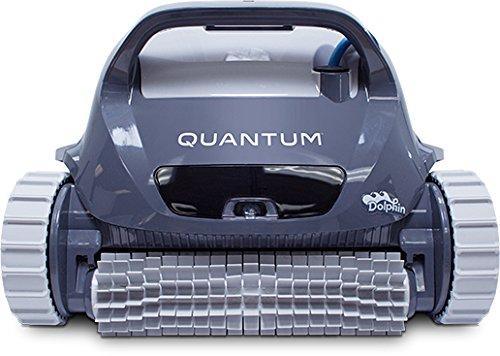 Dolphin Quantum Review