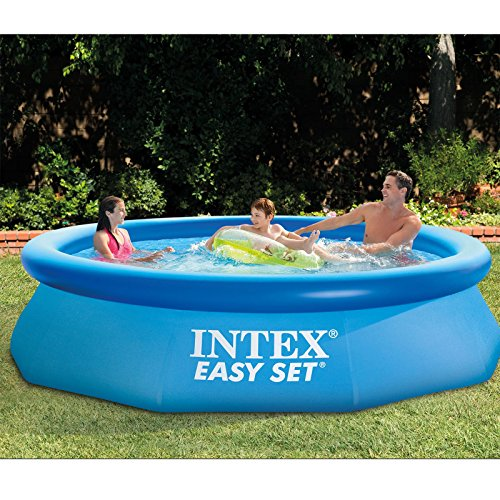 Intex Easy Set Up Pool (10 Foot x 30 inches)