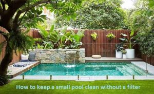 How to keep a small pool clean without a filter