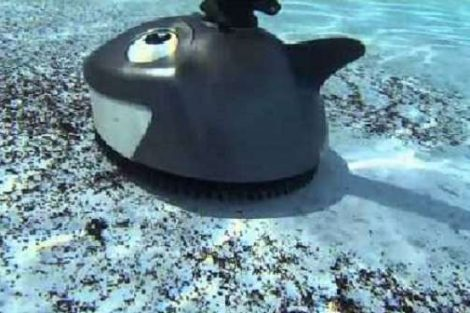 Pentair 360100 Kreepy Krauly Lil Shark